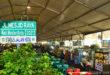 """Berubah fungsi demi bulan suci. Jalan Mesjid Raya di alih fungsi menjadi Bazaar makanan dan minuman """"Ramadhan Fair"""" di bulan Ramadhan.  Fotografer : Nurrafiqa"""