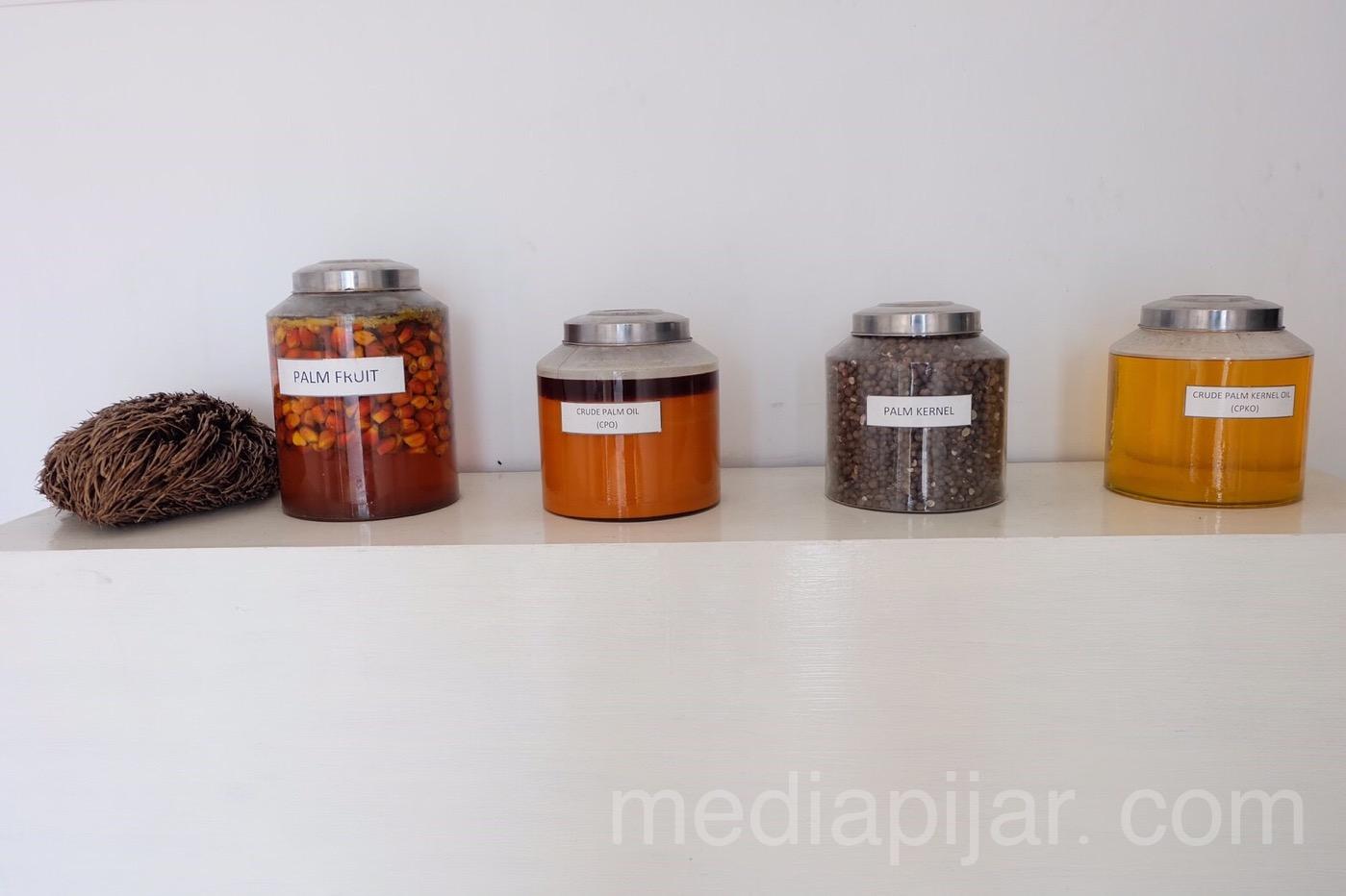 Beberapa bahan dasar yang bisa menghasilkan coklat dari kelapa sawit. Fotografer : Putri Arum Marzura