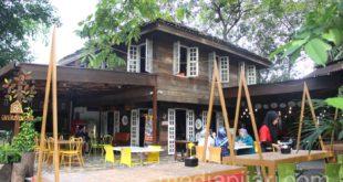 Cafe di Dalam Rumah Pohon Berikan Nuansa Yang Berbeda