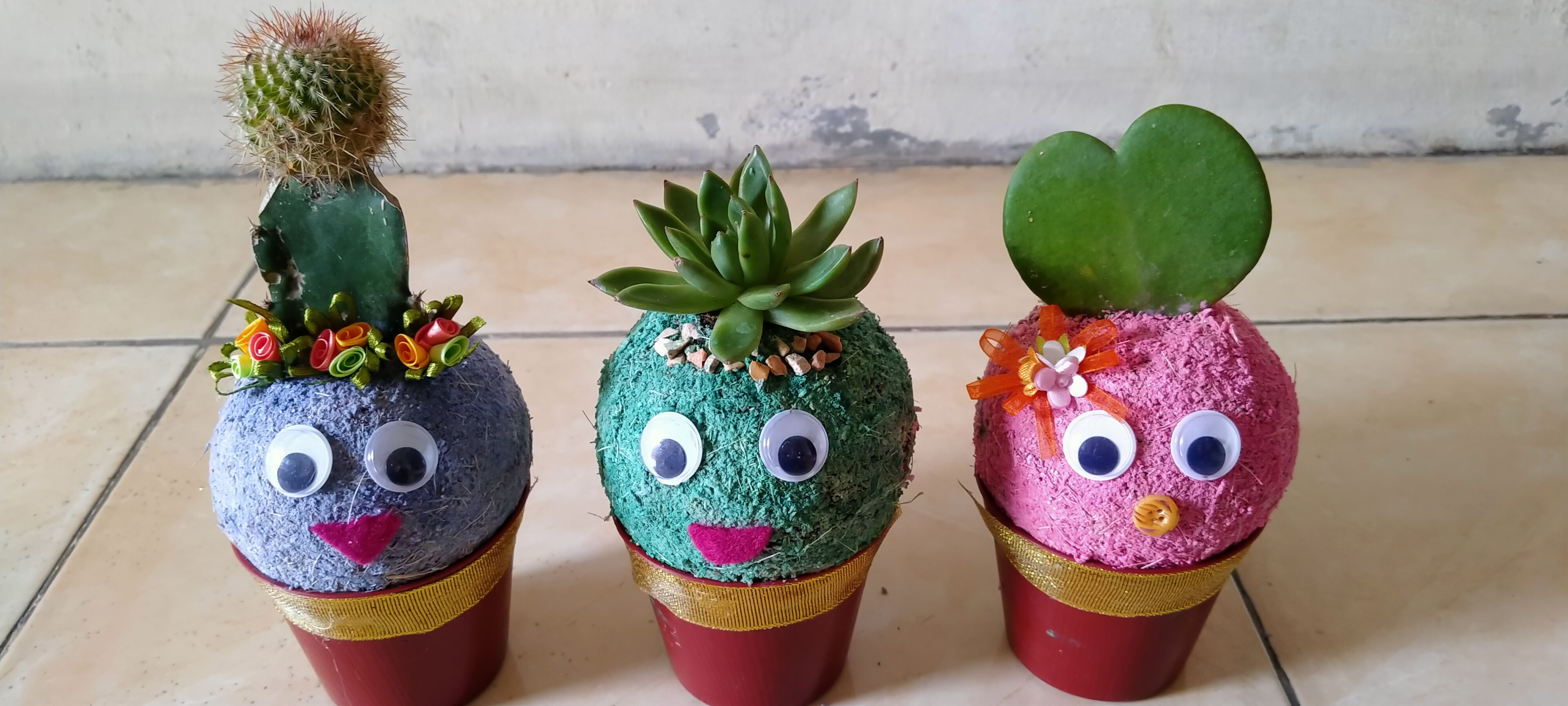 Tampilan produk Lek Lumut yang dapat dijadikan sebagai tanaman hias, souvenir pernikahan, ataupun hadiah wisuda.  (Sumber foto: Lek Lumut)